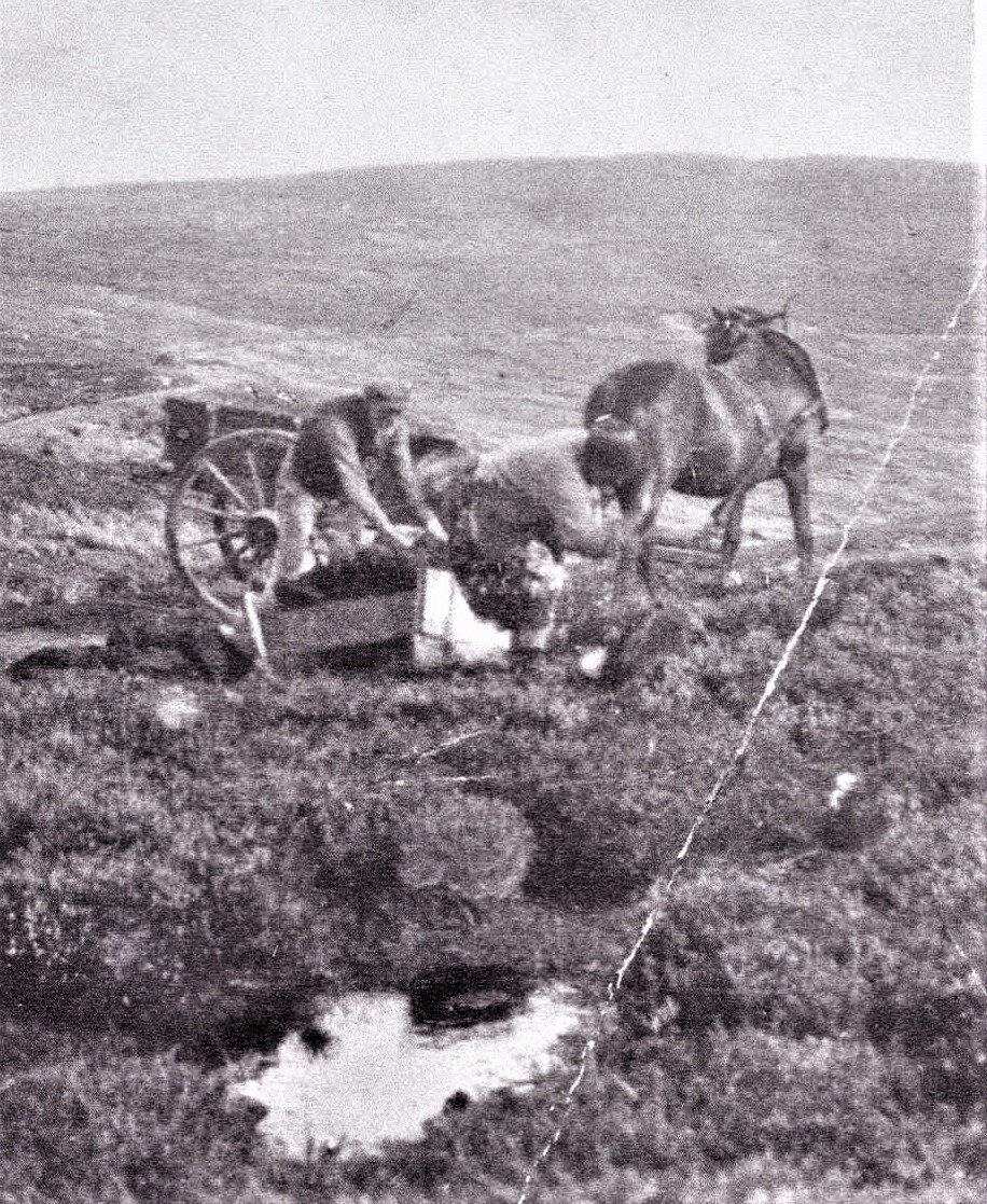A man and women collecting peat from their peat bank using a sledge and cart, late nineteenth century.